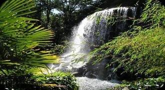 The Iveagh Gardens Dublin's alternative park